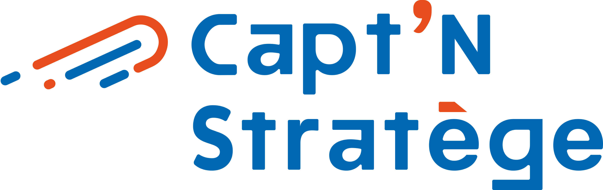 Logo Capt'N Stratège Digital |Votre prestataire webmarketing à Lyon
